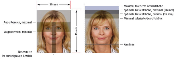 passbildgroesse-bei-biometrischen-passbildern